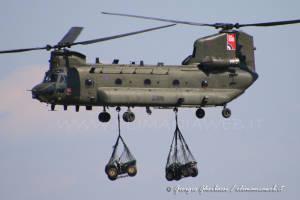 Chinook 008
