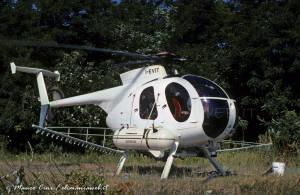 I-EVIT NH500D Elicaffaro Calosso