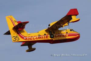 Pelican35 005